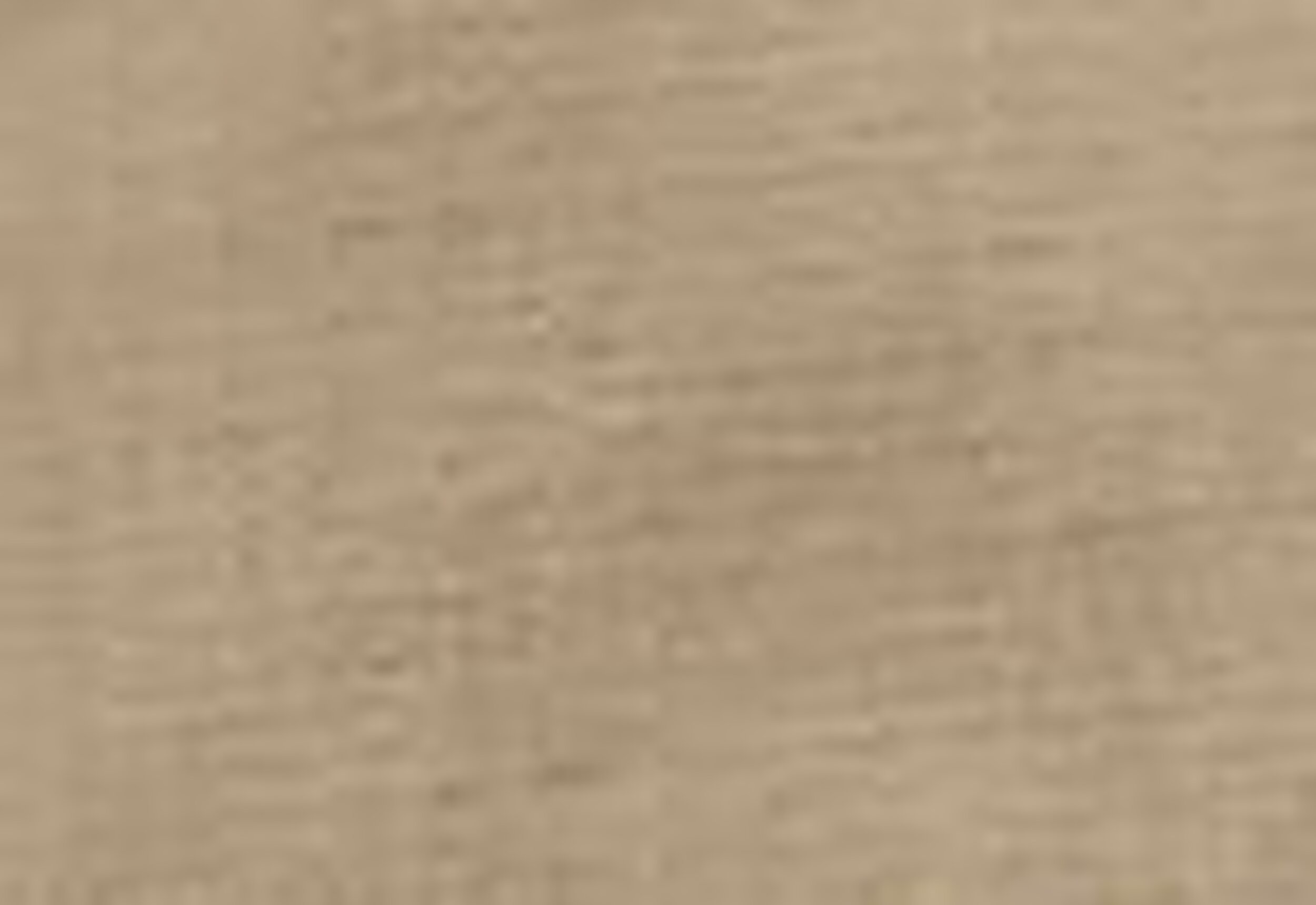 Lined Erkek Şort-True Chino Ns Nylon Rpstp