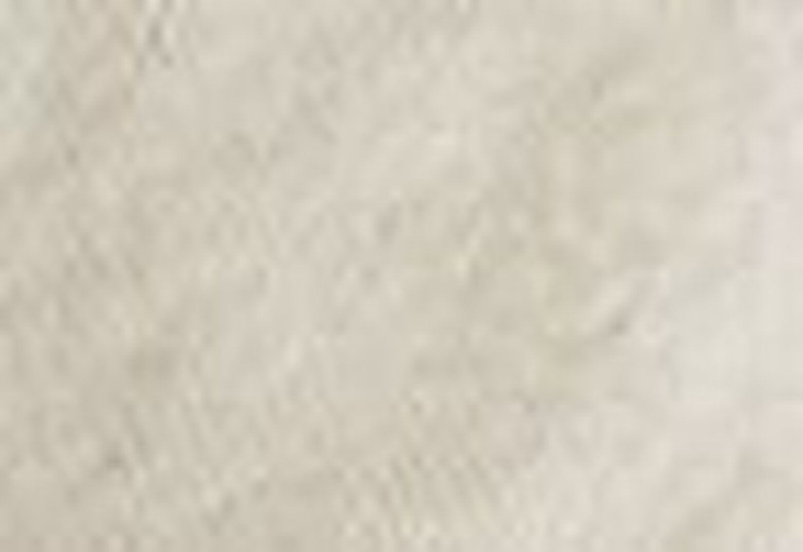 Wellthread Perfect Tee Sand Cotton Beyaz Kadın Tişört