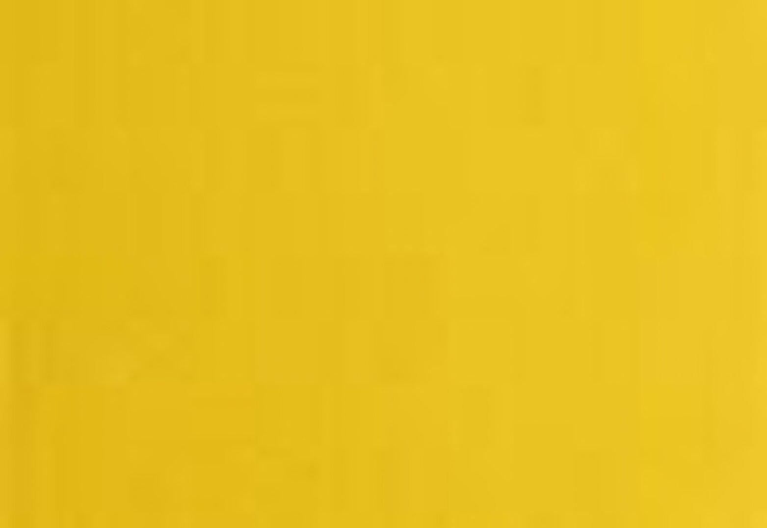 Levi's® X Disney Down Vest Kadın Turuncu Yelek