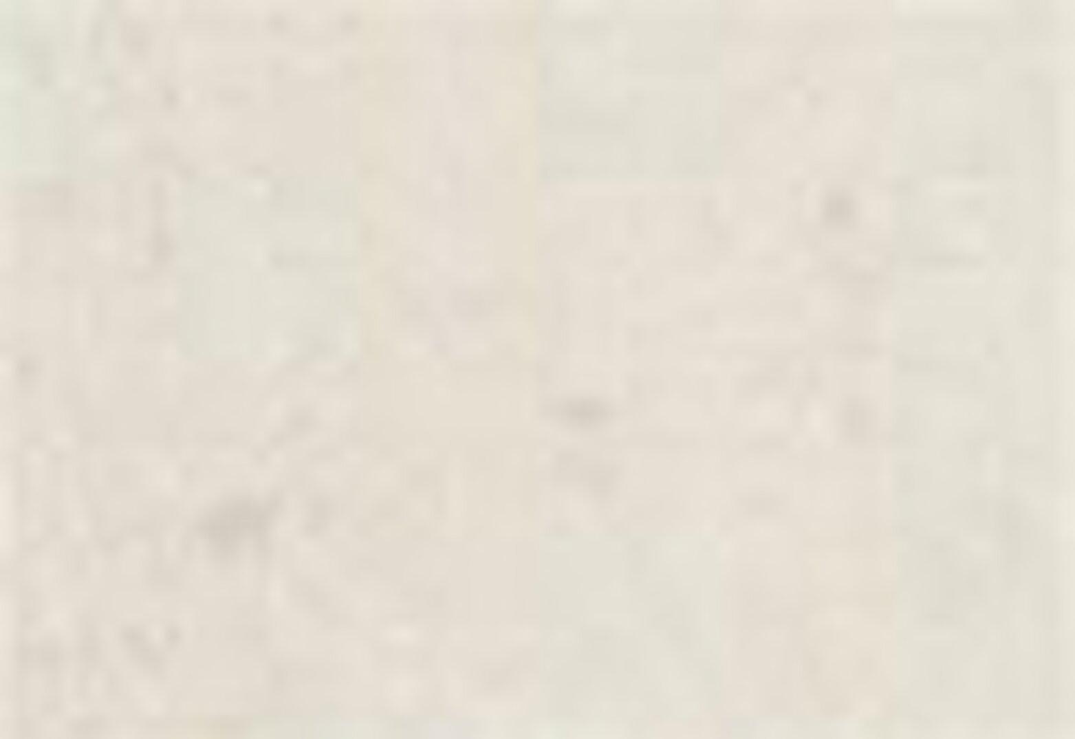 Wellthread Hoodie W Beach Beyaz Kadın Kapüşonlu Sweatshirt